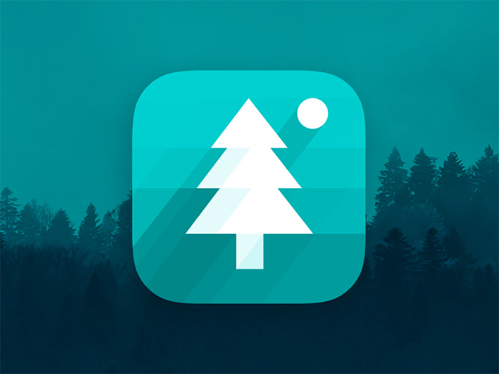 in-the-woods-app-icon