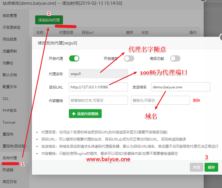 如何设置域名反代任意端口?