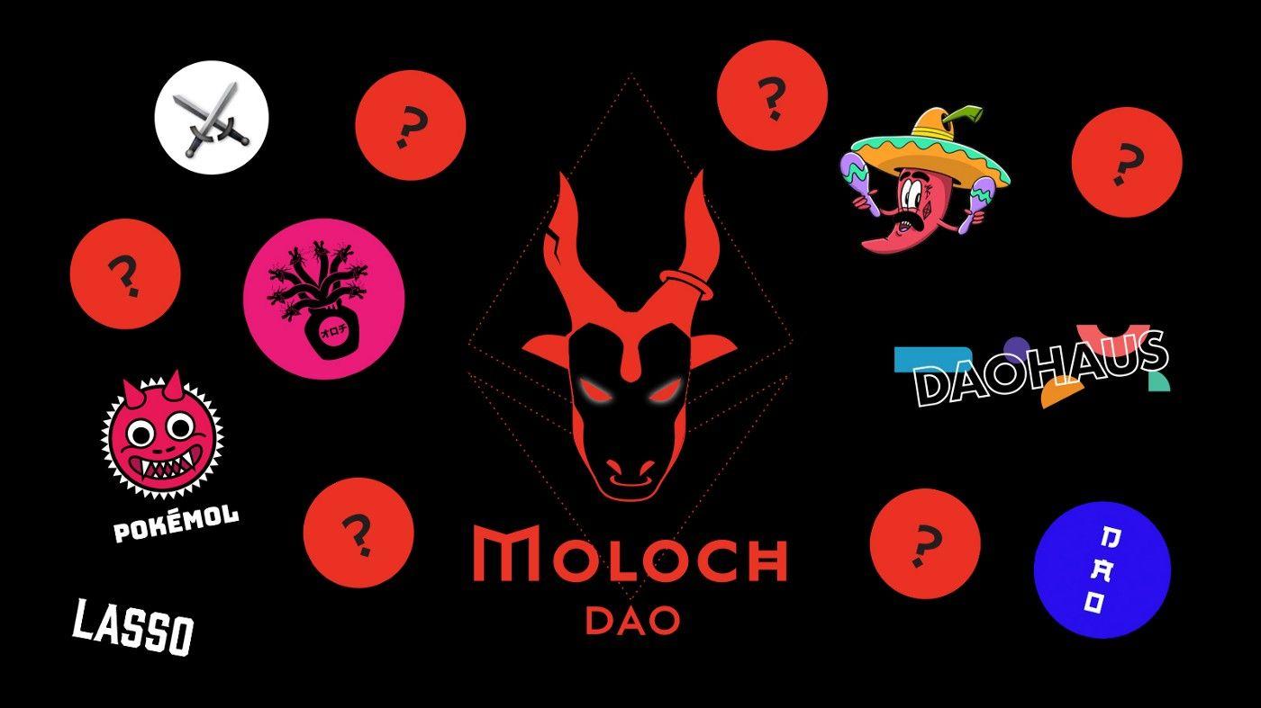 Moloch 入门宝典