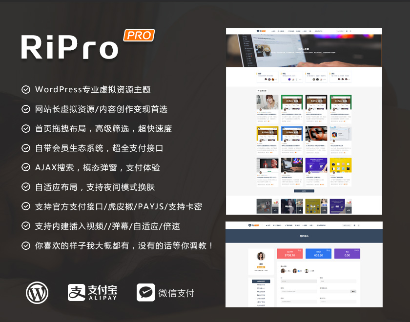 【WordPress】RiPro6.4.2去授权破解版修复去后门-WEBCANG-WEB仓