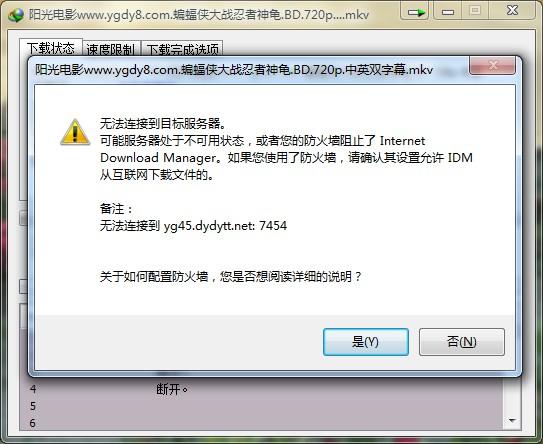 IDM下载