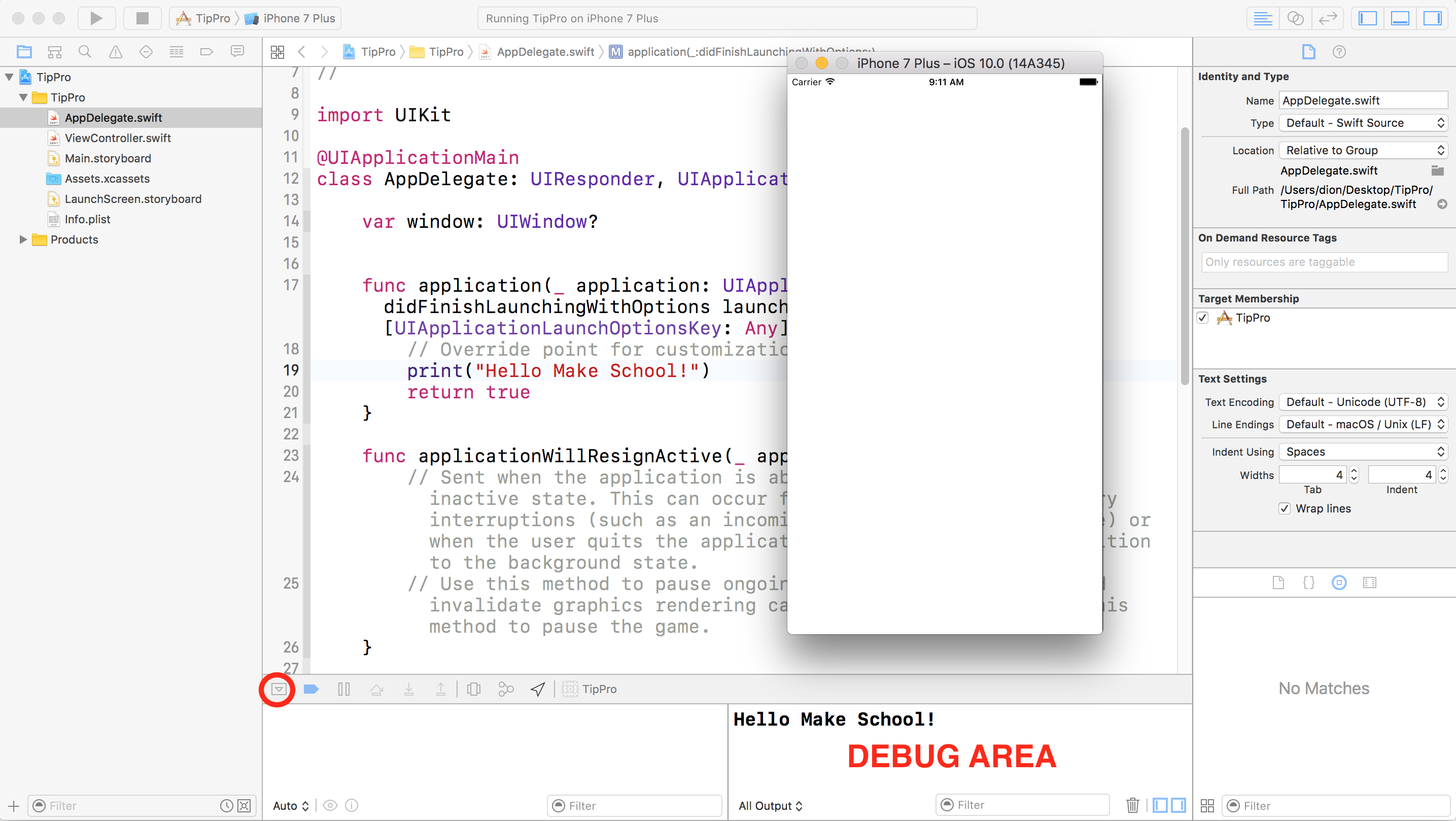A wild debug console appears!
