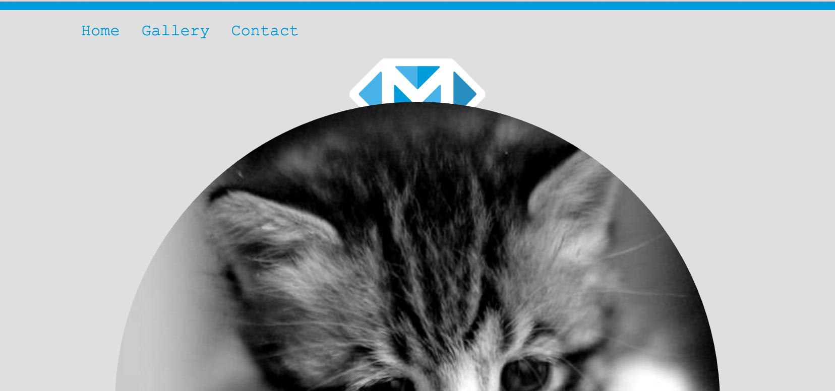 Logo below image