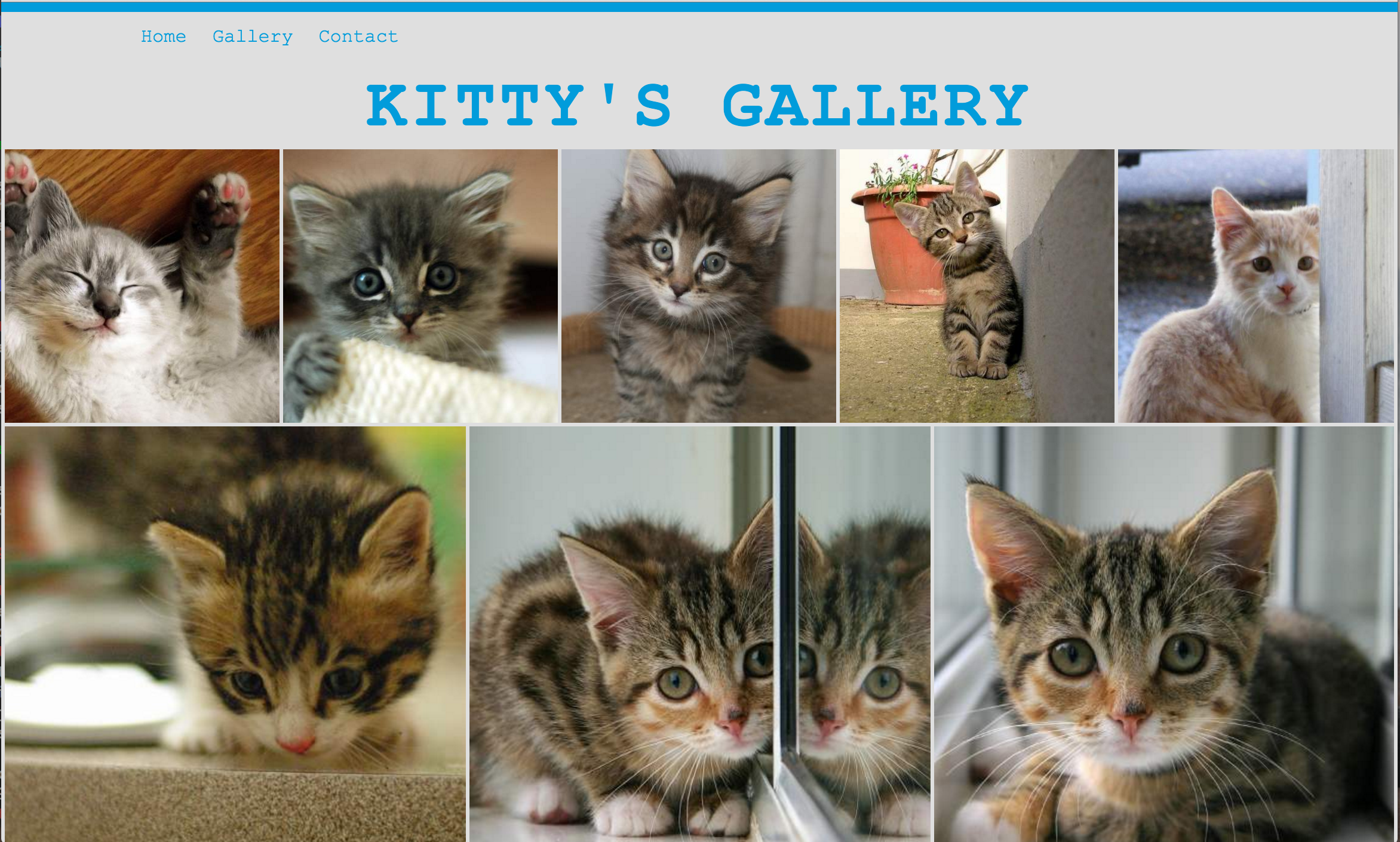 Gallery with JS