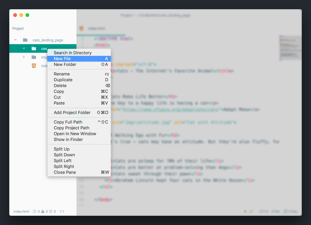 Stylin' With CSS | Make School