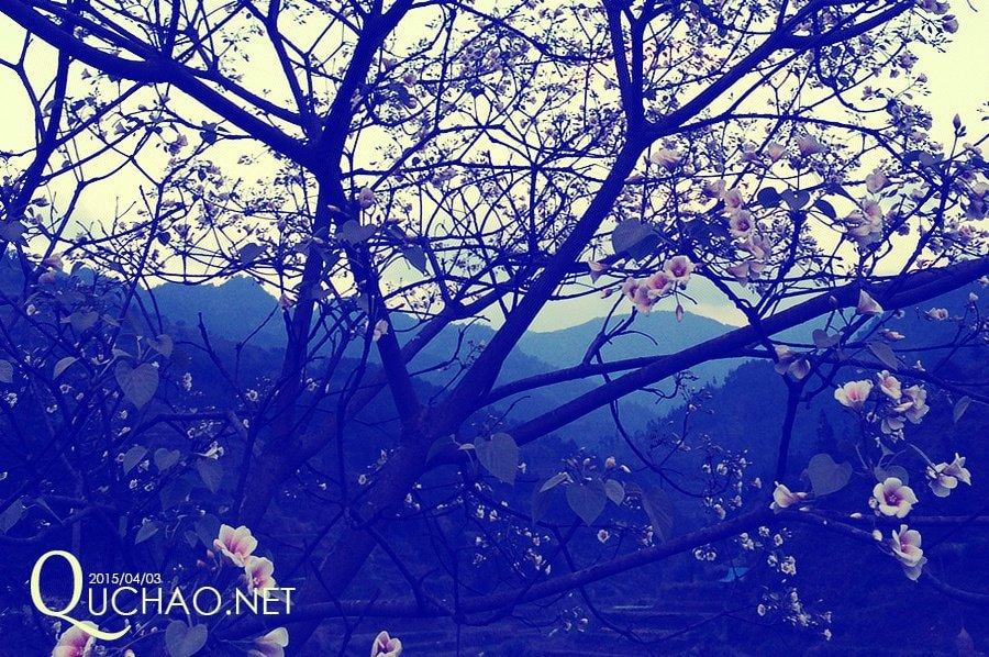 贵州-Mark's Photo