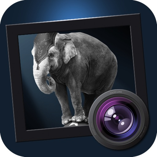 JixiPix Dramatic Black & White 2.6.5 Crack