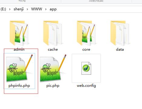 图2 phpinfo文件