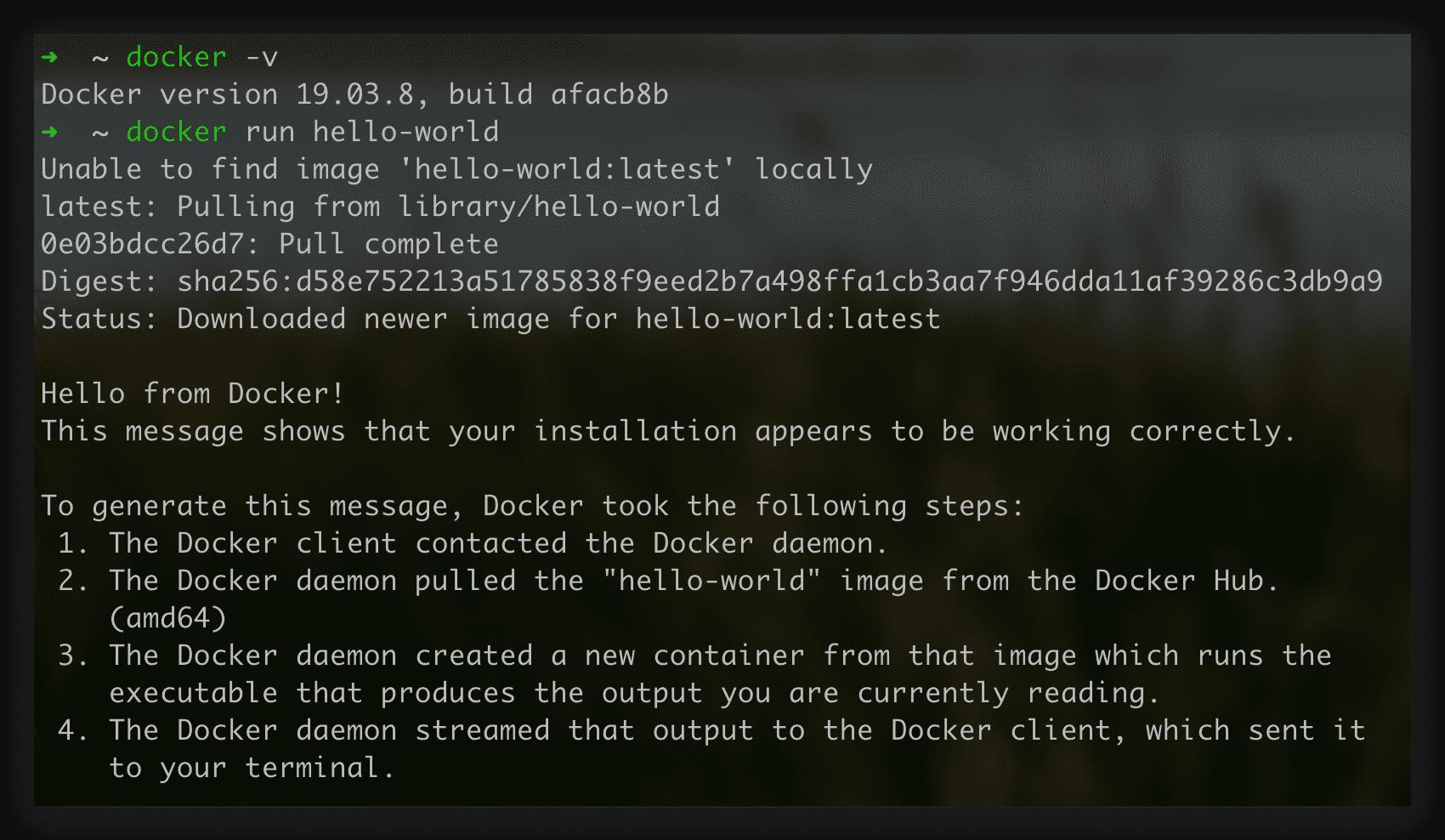 Docker跑起Helloworld