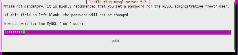 web-mysql-passwd.png