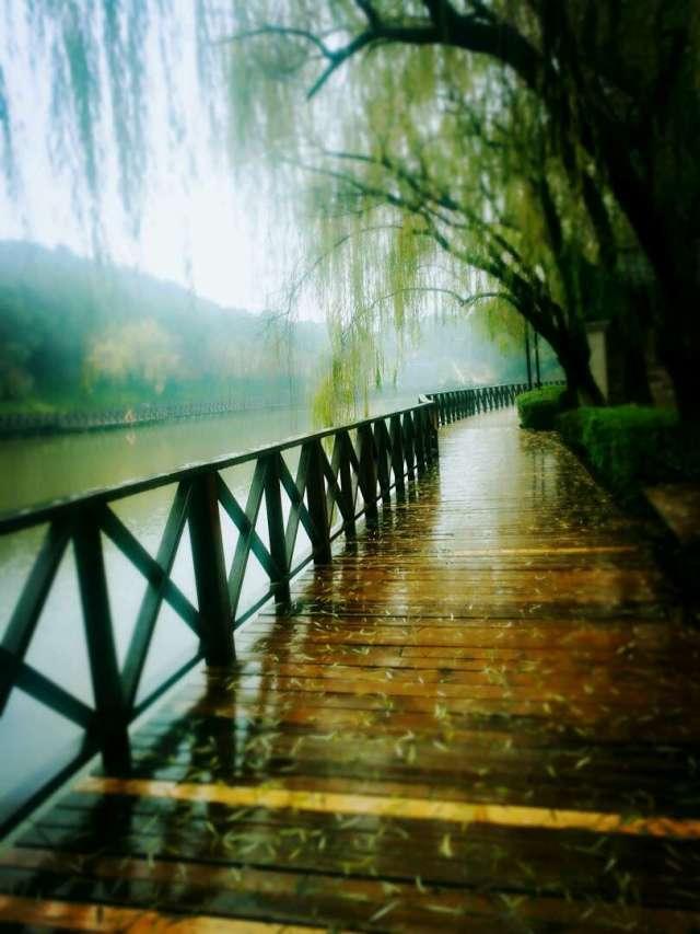 情人湖木质走廊1