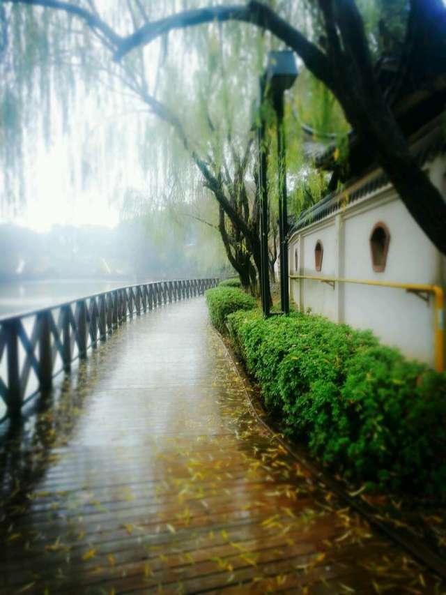 情人湖木质走廊2