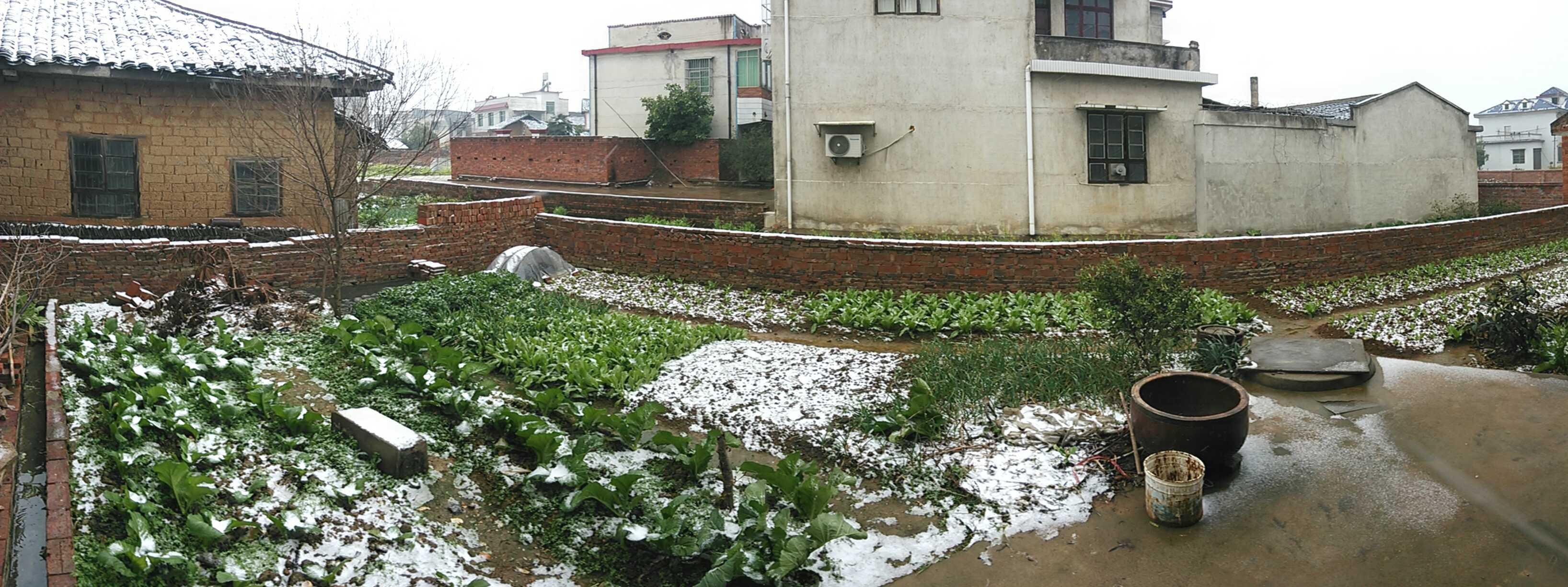 2014年冬季