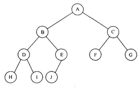 Complete Tree