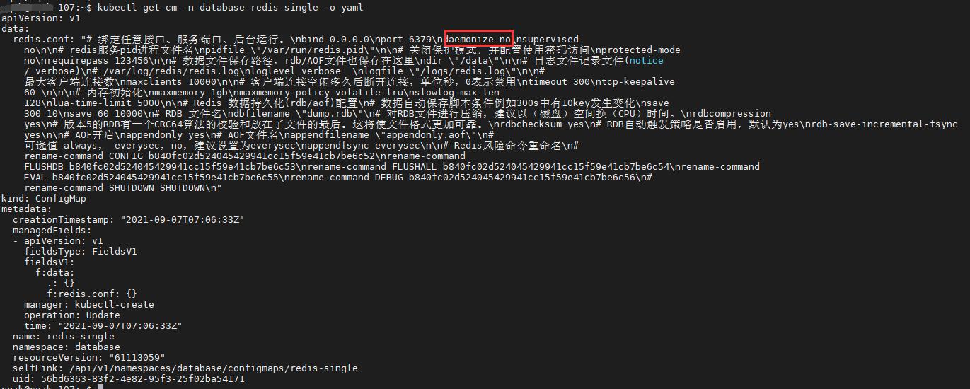 WeiyiGeek.configMap资源