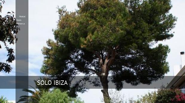 Hostal Hostal Oasis Menorca