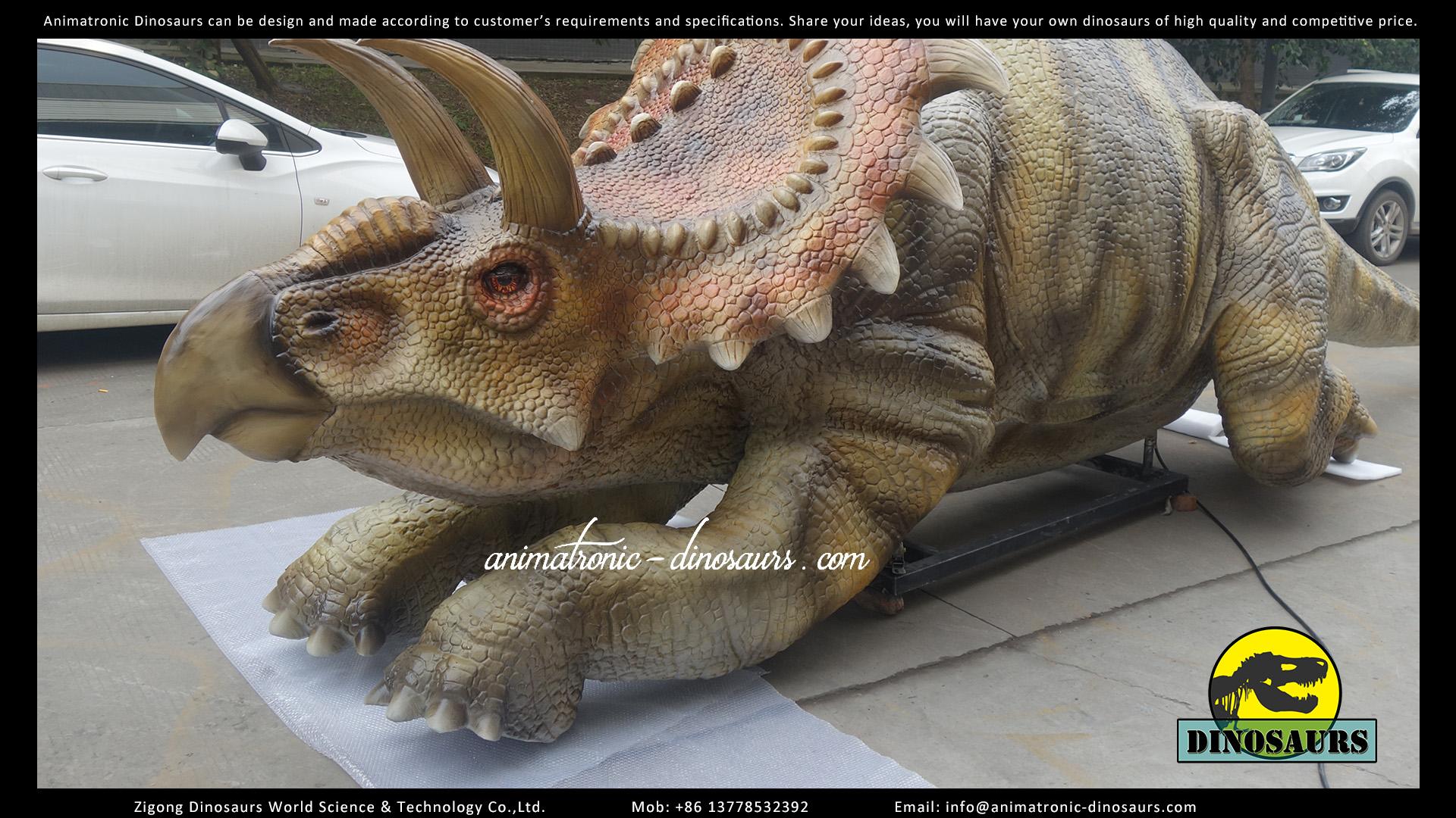 DWD252 Albertaceratops (1)