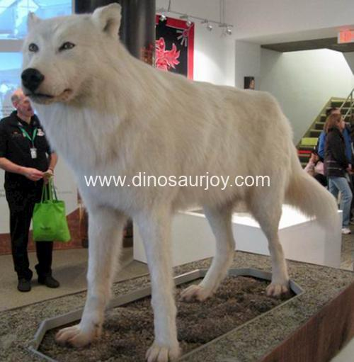 DWA016 Wolf(Artificial hair on the skin )