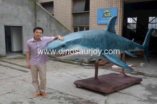 DWA139 Shark