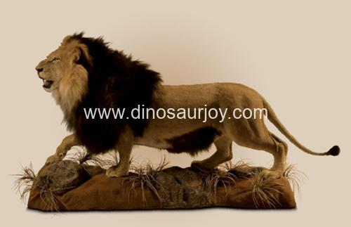 DWA3760 Lion( Artificial hair on the skin )