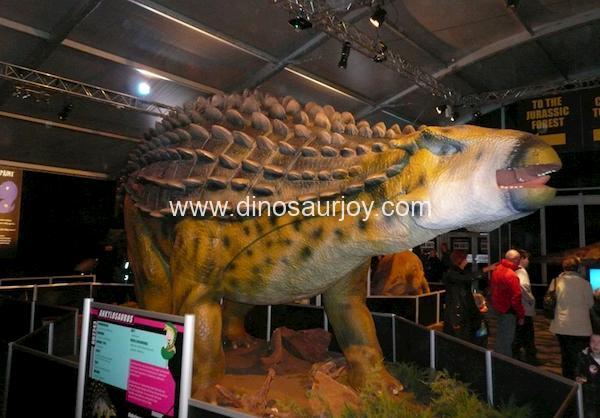 DWD106 Ankylosaurus