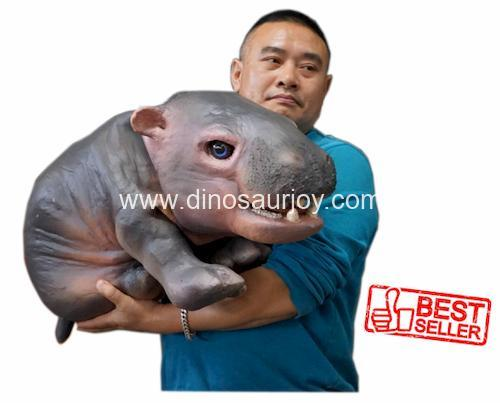 DWH006 Baby Hippo