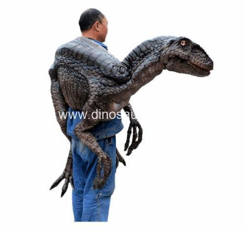 DWH007 Young Velociraptor
