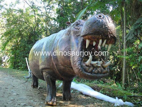 DWA043 hippo