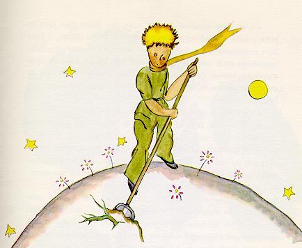 The Little Prince 猴面包树星球 危险