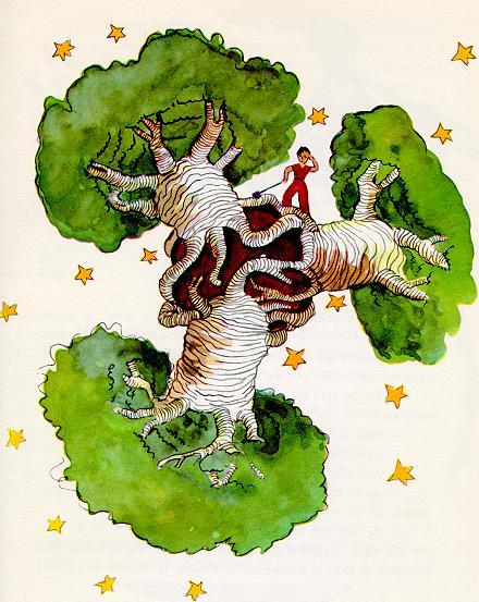 The Little Prince 拔掉猴面包树苗给星球梳洗