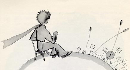 the little prince 是个蘑菇 花的刺