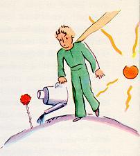 The Little Prince 拿着喷壶打来了一壶清清的凉水,浇灌花儿