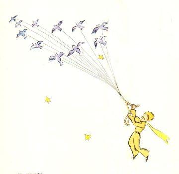 小王子 候鸟迁徙跑出星球 离开B612