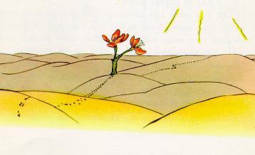 小王子-三枚花瓣的花朵