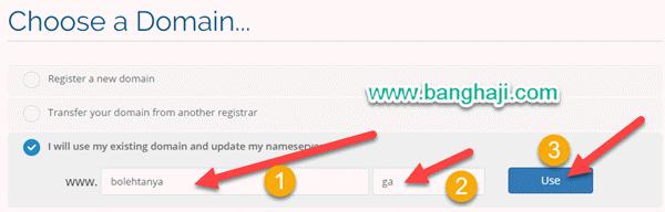 Input Nama Domain