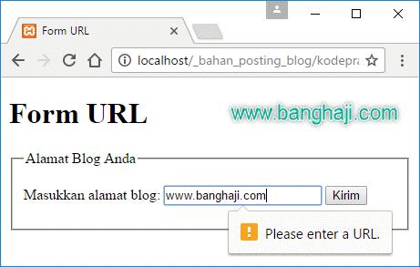 Validasi URL HTML5