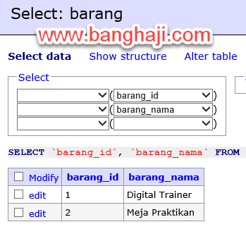 Hasil Select Option Adminer