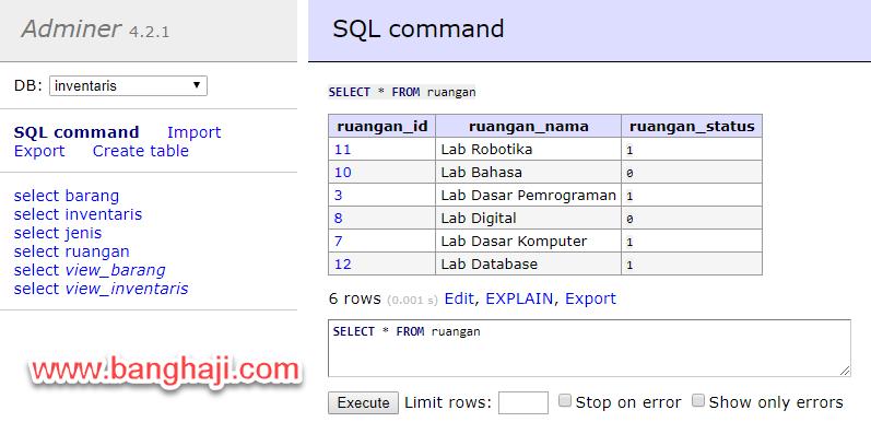 SQL Command Result Adminer