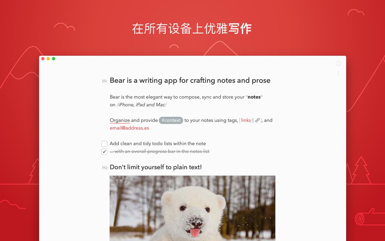Bear(熊掌记)截图3