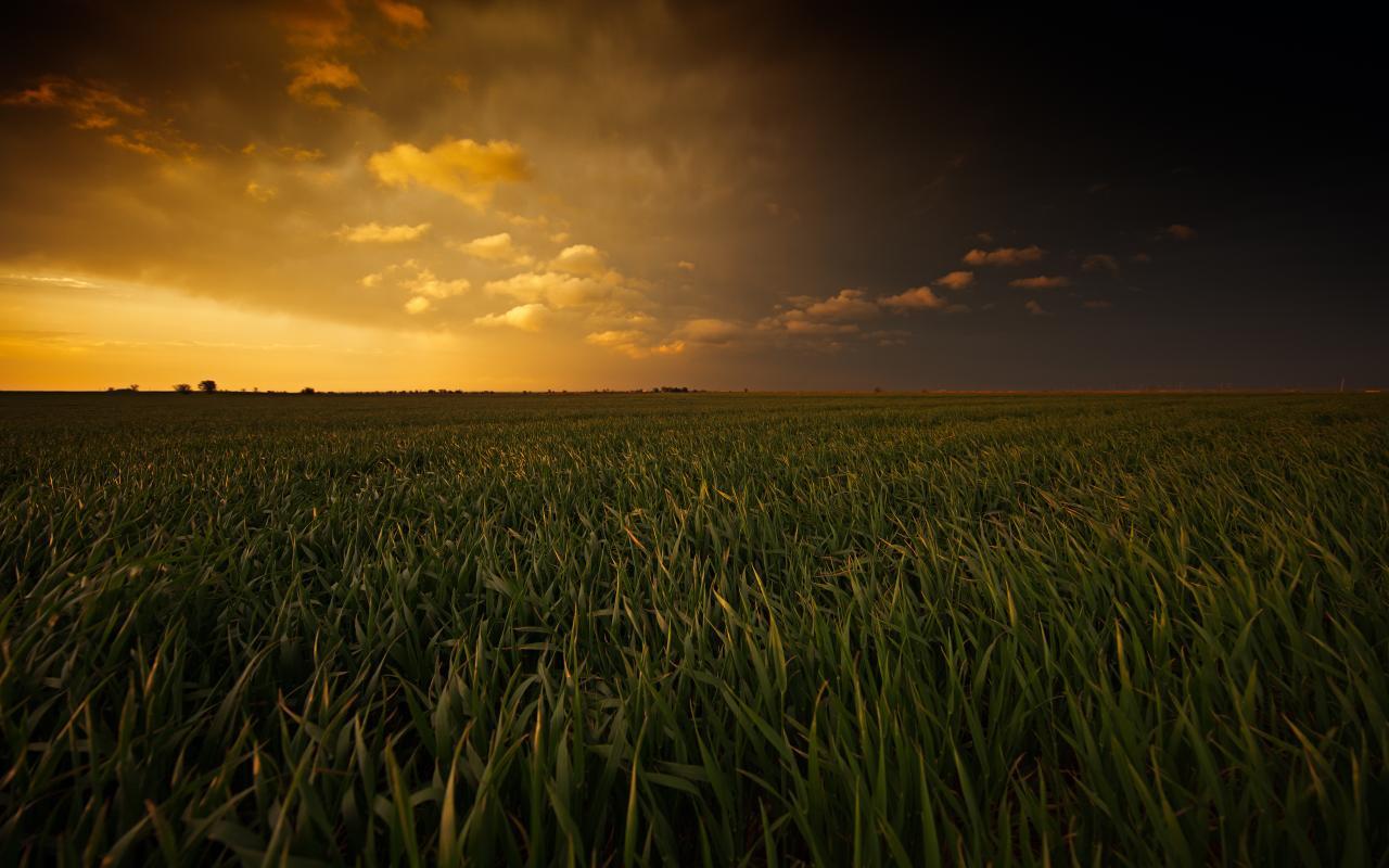 Painted Plains
