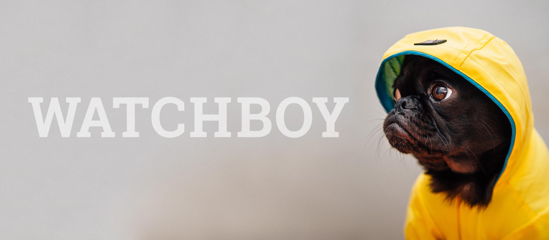 watchboy logo