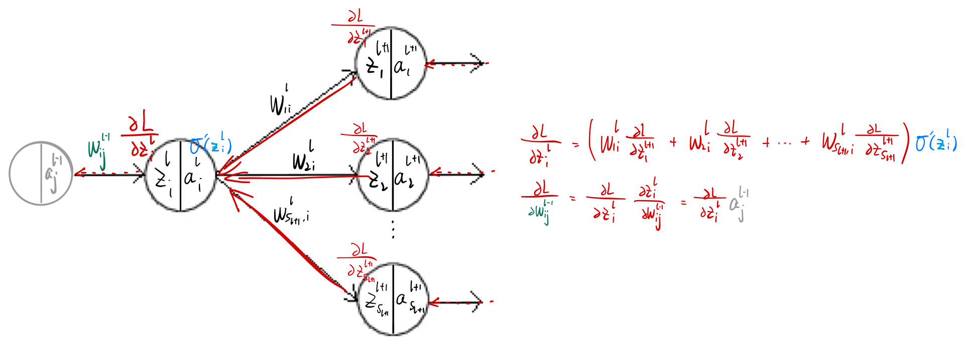 图1. 反向传播示例(黑色箭头代表前向传播,红色箭头代表反向传播