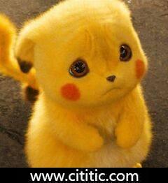 黄布娃娃猫玩具卡通表情图片