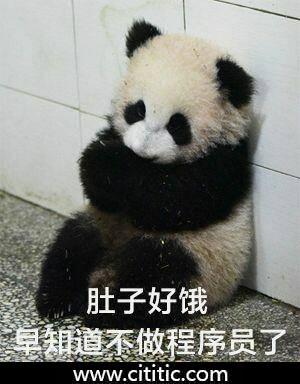 可怜熊猫缩坐墙边表情图片