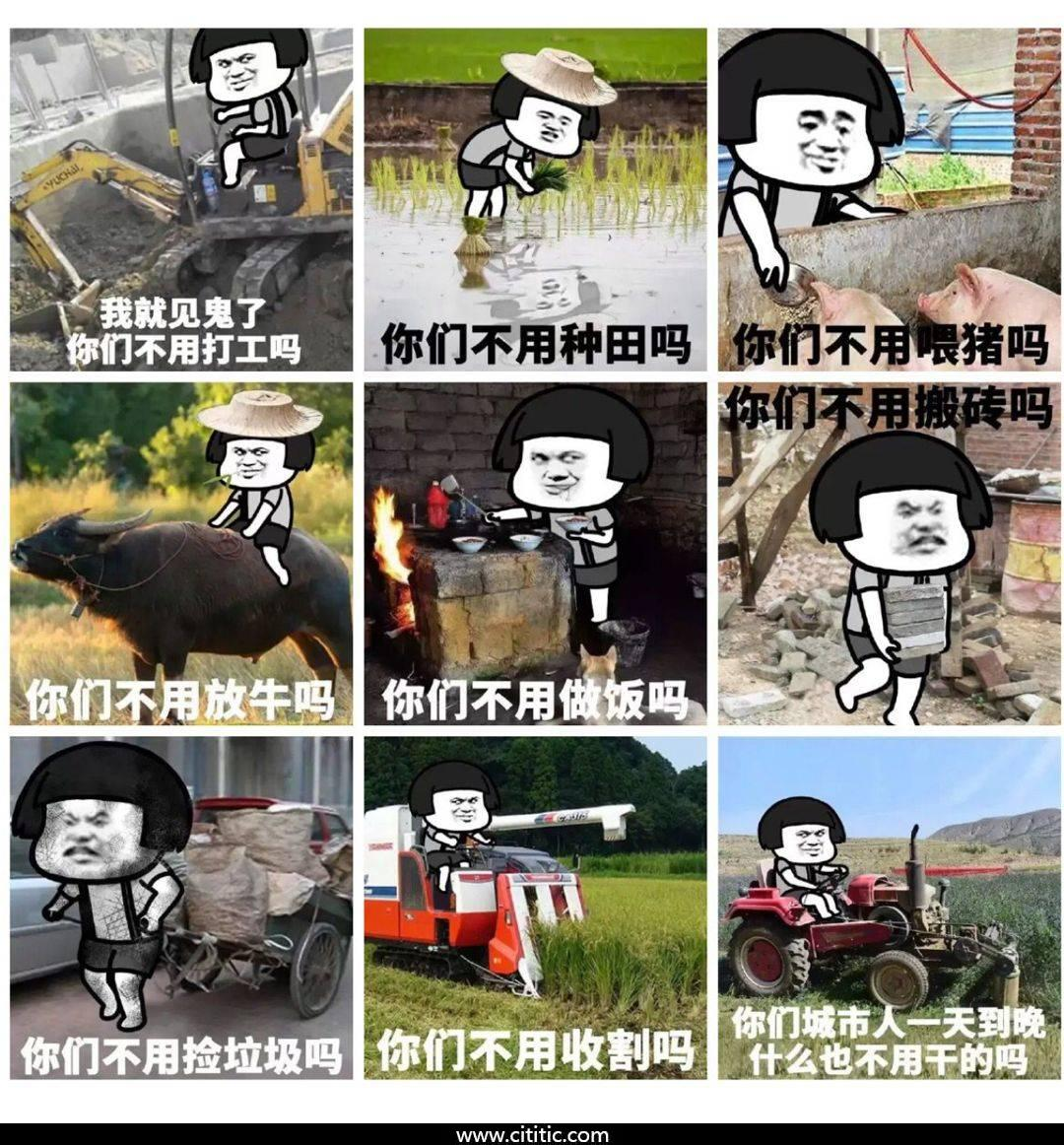 蘑菇头农村干活合集表情图片