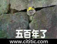 孙悟空五指山五百年猫头搞笑表情图片