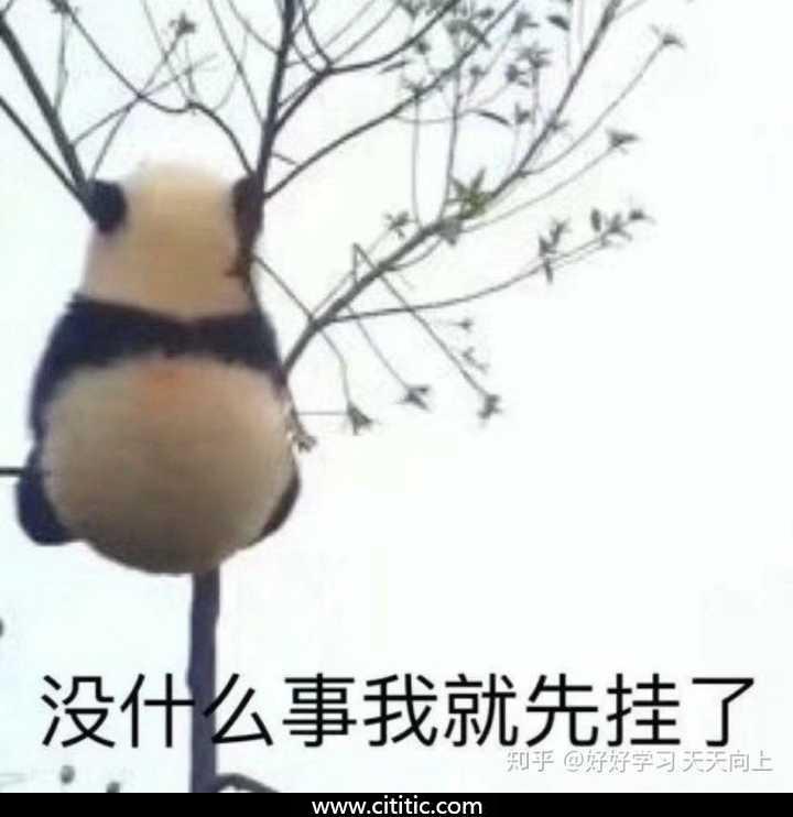 熊猫吊树上表情图片