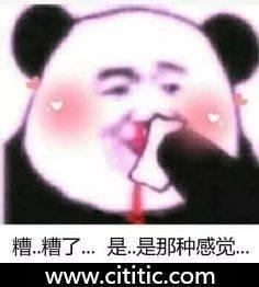 熊猫头糟了是那种感觉表情图片
