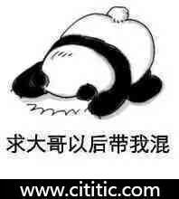 熊猫跪地求大哥带表情图片