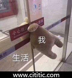 银行玻璃门夹玩具熊布娃娃生活我表情图片